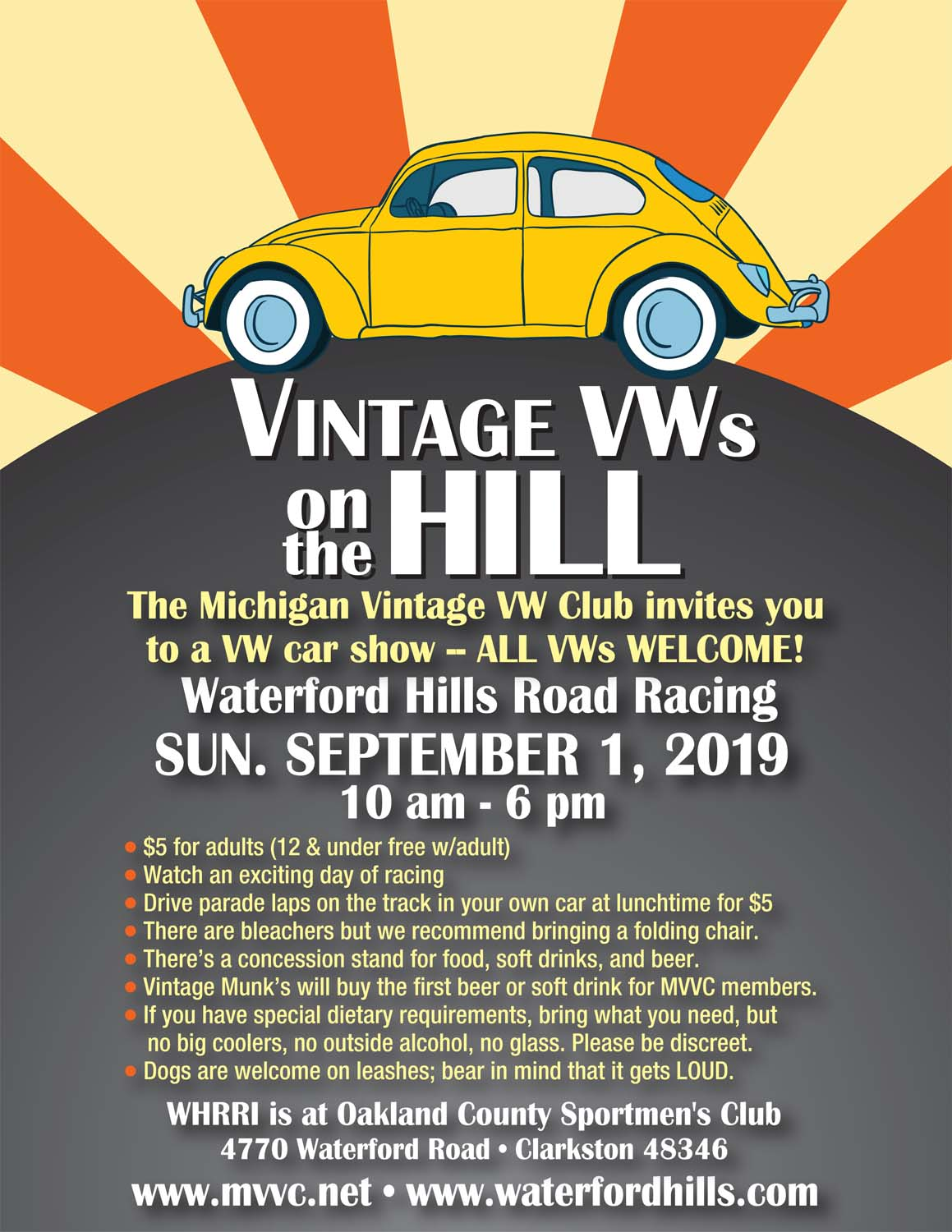 Vintage VWs on the Hill